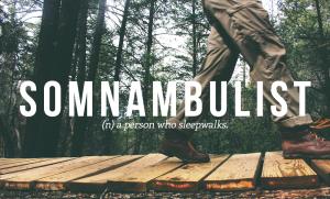 somnambulist